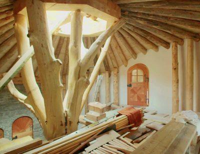 Wood, Plywood, Lumber