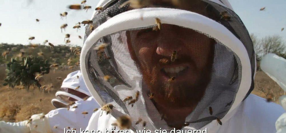 Angriff der Killerbienen