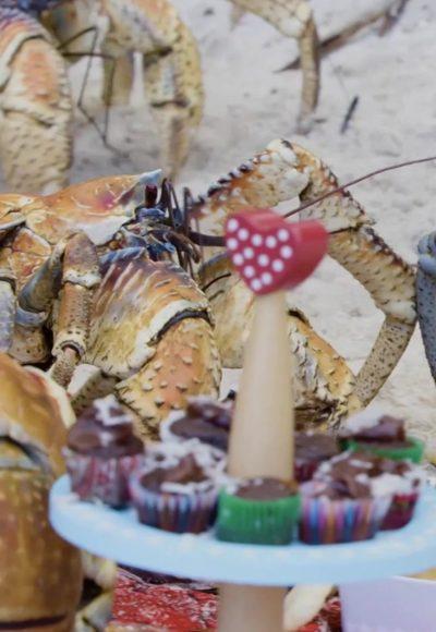 Ein Gigant von einer Krabbe