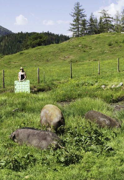 Mangalizaschwein und…