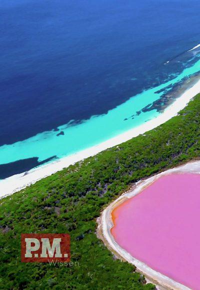 Warum ist dieser See pink?