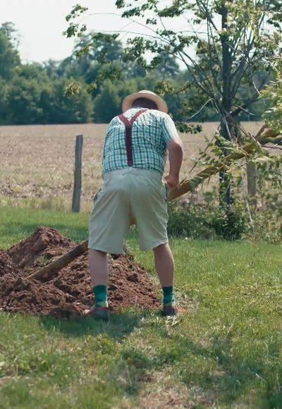 Tipp: Baum setzen