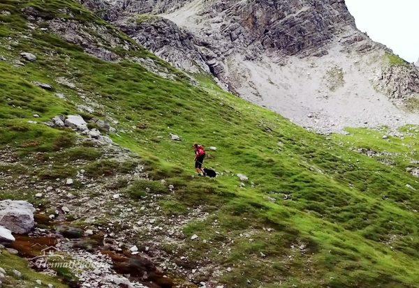 Almleben in Tirol